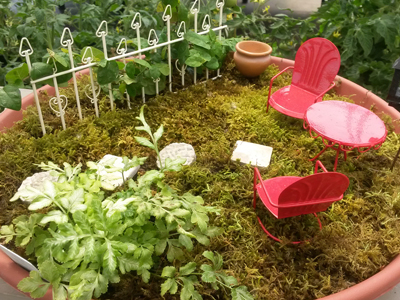 Baueru0027s Has The Largest Selection Of Miniature Garden Accessories In The  Area! Looking To Create A Traditional Or English Garden; Or A Farm Or Beach  ...