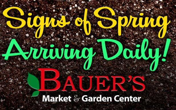 This Week at Bauer's Market & Garden Center | March 18, 2019