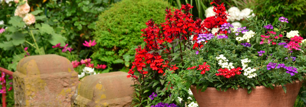 Planted flowers in a container garden outside