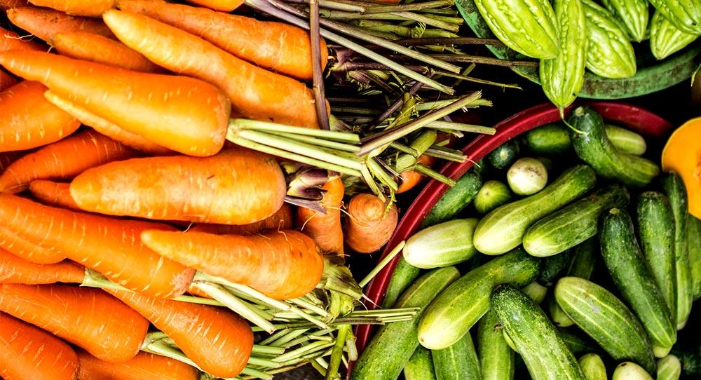 garden fresh carrots and cucumbers