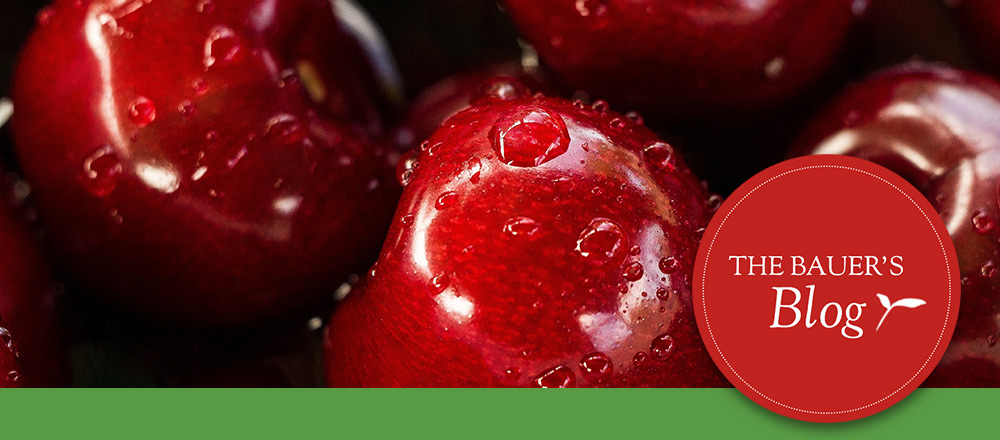 The Importance of Refrigerating Your Apples