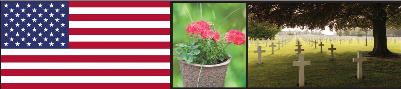This Week at Bauer's Market & Garden Center | May 20, 2019