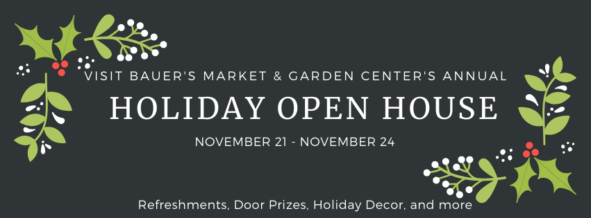 This Week at Bauer's Market & Garden Center | November 18, 2019