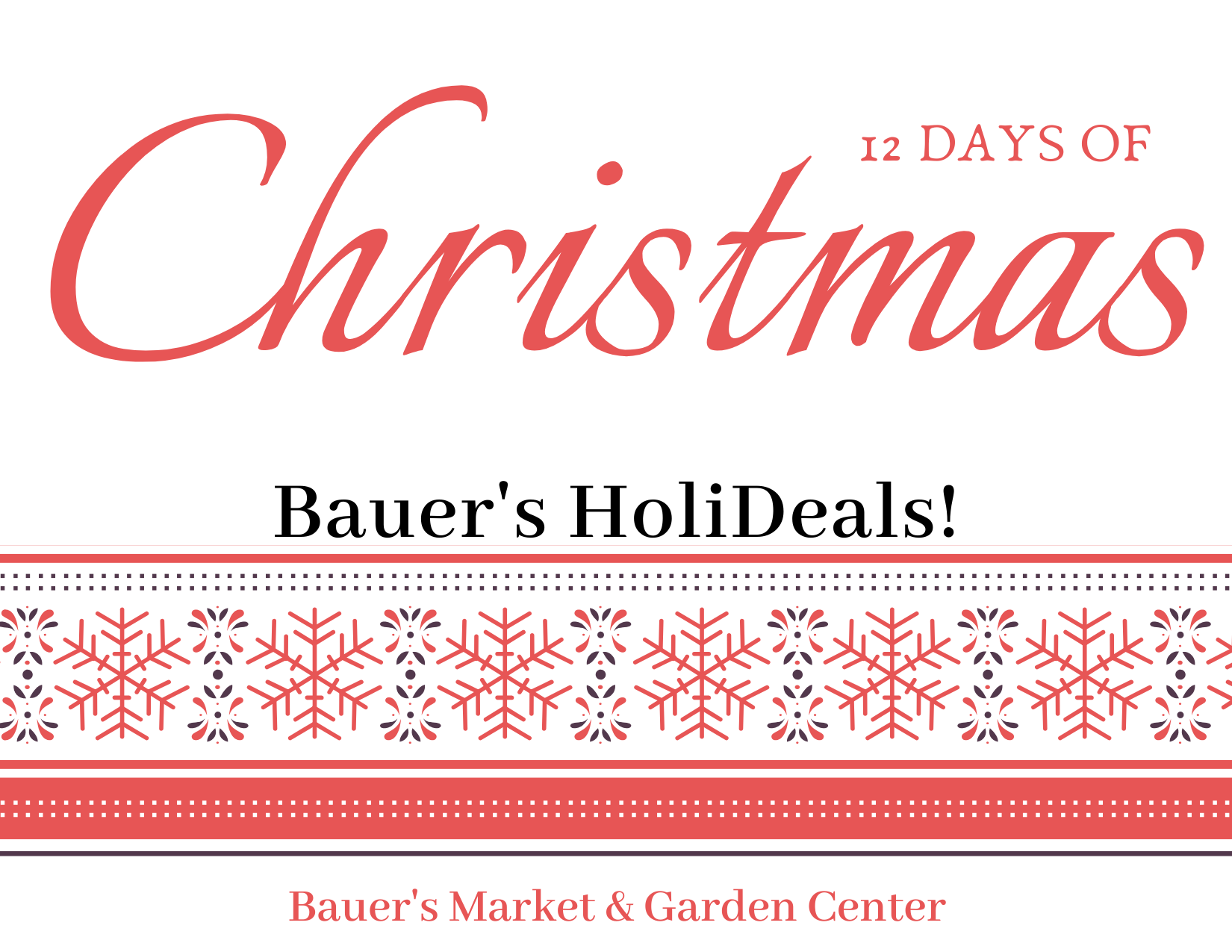 This Week at Bauer's Market & Garden Center | December 2, 2019