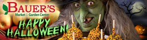 Trick 'er Treat 2020 @ Bauer's Market & Garden Center | La Crescent | Minnesota | United States