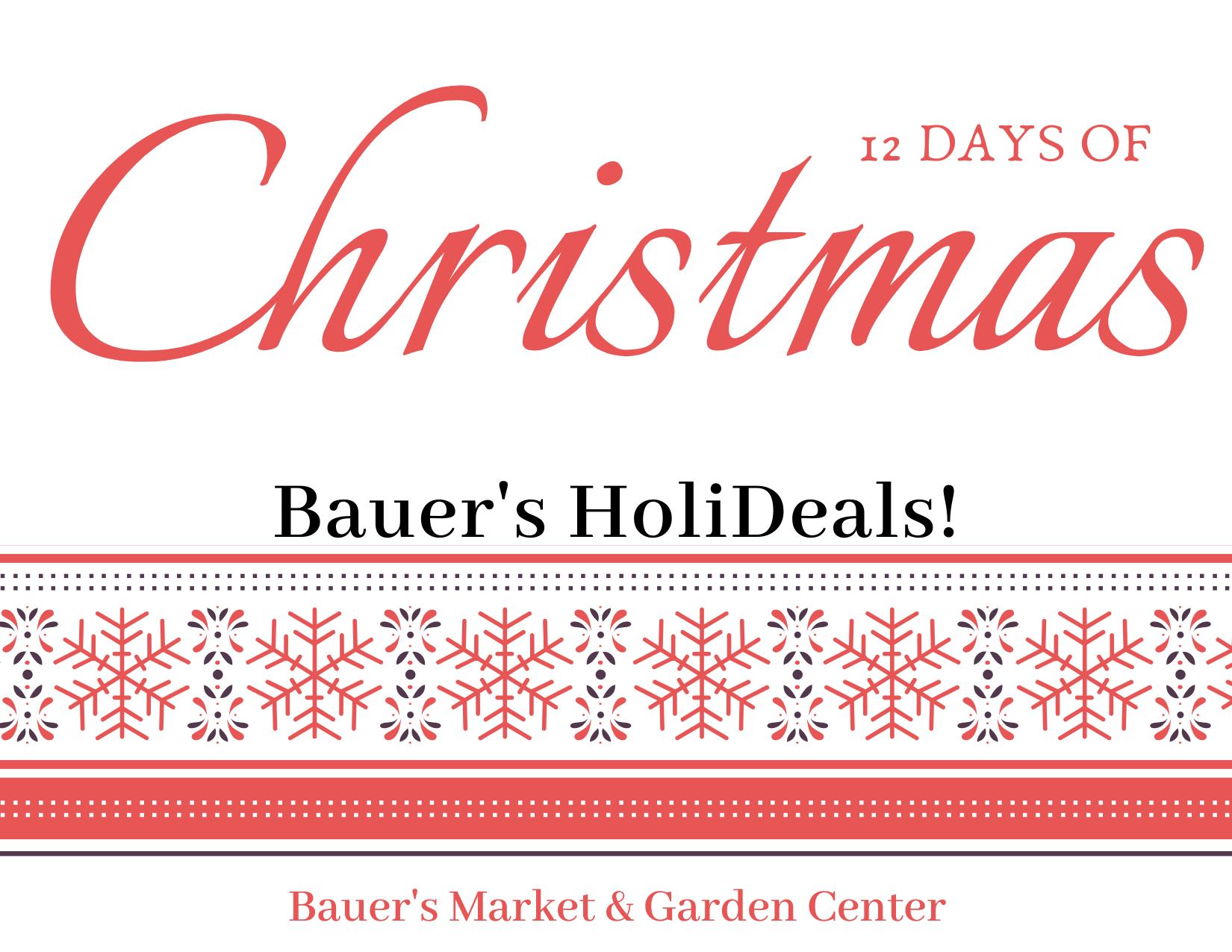 This Week at Bauer's Market & Garden Center   December 2, 2019